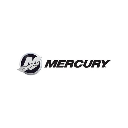 Chip Tuning Mercury Marine